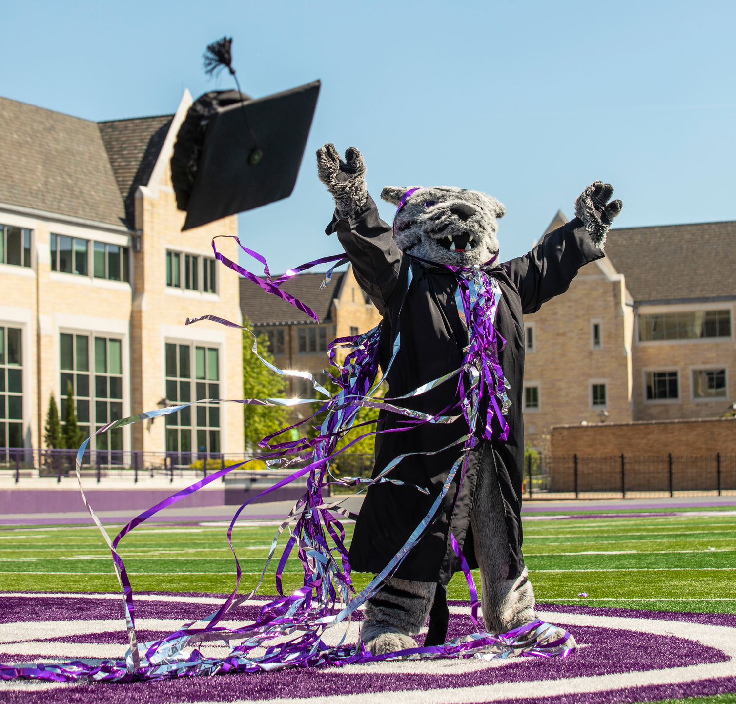 tommie mascot stands at midfield in O'Shaughnessy Stadium while wearing commencement robes
