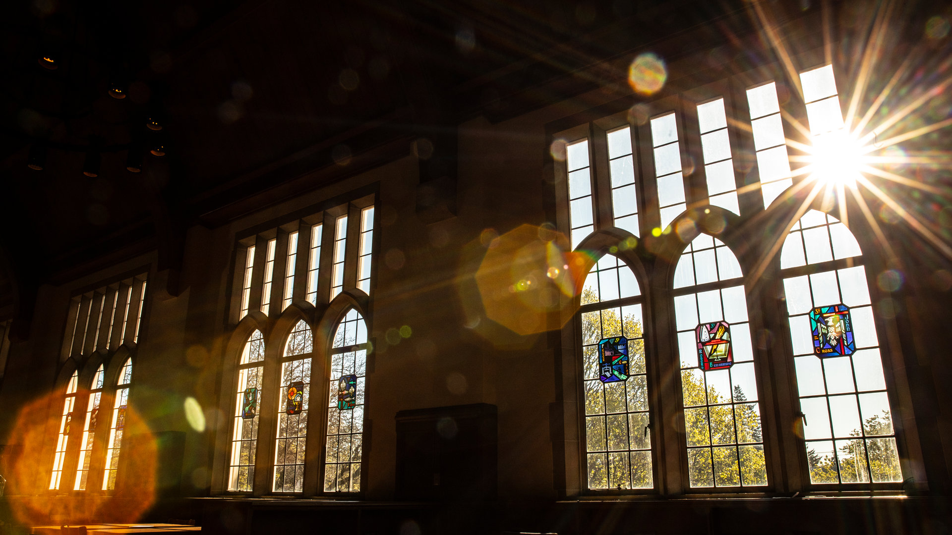 sun shines into windows in the O'Shaughnessey Frey library leather room